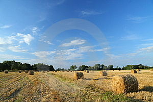 Straw Bales On Farmland With Blue Cloudy Sky Stock Images - Image: 6204454