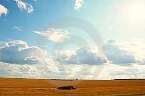 Nature Royalty Free Stock Image - Image: 6205346