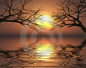 Sunset Trees Royalty Free Stock Photos - Image: 6225158