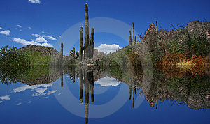 Desert Reflections Royalty Free Stock Photos - Image: 6225178