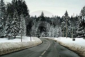 Winter Road Royalty Free Stock Image - Image: 6230646