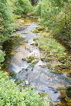 Stream In The Green Stock Photos - Image: 6238793