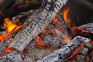 Burning Campfire With Coals Royalty Free Stock Image - Image: 6239466