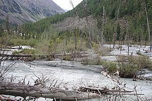 Altai Mountain In Summer Stock Photo - Image: 6243210