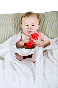 Portrait Of The Small Boxer Stock Photography - Image: 6246742