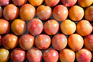Crate Of Plum Royalty Free Stock Photo - Image: 6259145
