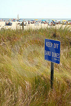Grassy Sand Dune Stock Images - Image: 6264554
