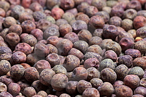 Colorful Seeds Close-up Royalty Free Stock Photography - Image: 6284037