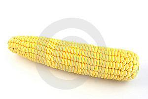 Yellow Corn Royalty Free Stock Photography - Image: 6285727