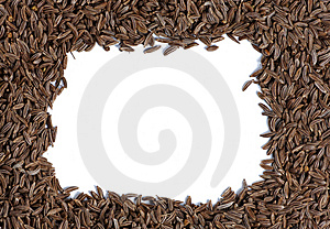 Caraway Seed Close-up Royalty Free Stock Photography - Image: 6285927