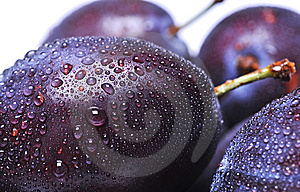 Plums Royalty Free Stock Image - Image: 6286546