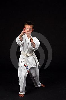 Traditional Karate Student Royalty Free Stock Photos - Image: 6296038