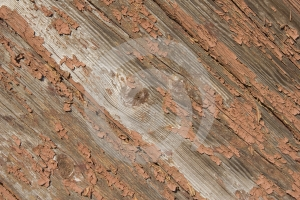 Plank 3 Stock Image - Image: 635281