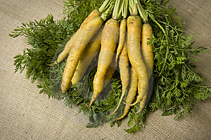 Organic Yellow Carrots Royalty Free Stock Image - Image: 6302486