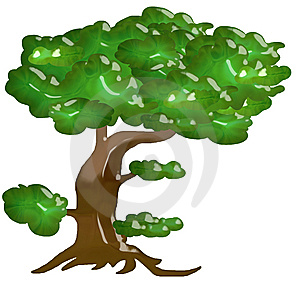 Glassy Tree Royalty Free Stock Photography - Image: 6302587