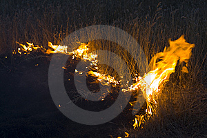 Fire In Steppe Stock Images - Image: 6310974