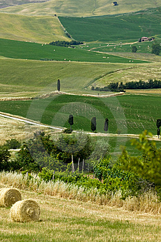 TUSCANY Countryside With Farms And Hay-ball Stock Photography - Image: 6321362