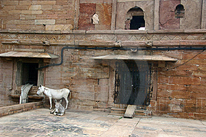 Mulan In The Gwalior Fort,  India Royalty Free Stock Photography - Image: 6324797