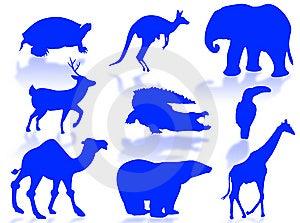 Wildlife Royalty Free Stock Image - Image: 6341586