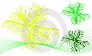 Tropical Leaf Set Royalty Free Stock Images - Image: 6350139