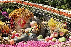 Harvest Royalty Free Stock Photo - Image: 6357235