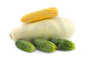 Corn On A Vegetable Marrow Stock Photos - Image: 6358743