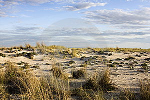 Sand Dune During Dusk Stock Photography - Image: 6362022