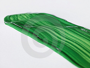 Green Brush Stroke Royalty Free Stock Photography - Image: 6369287