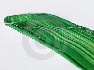 Groene Borstelslag Royalty-vrije Stock Fotografie - Afbeelding: 6369287