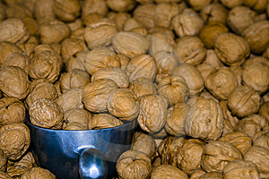Walnut Bin With Scoop Stock Image - Image: 6395921