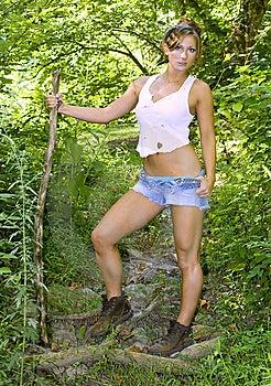 Walking Stick Stock Photos - Image: 6406133