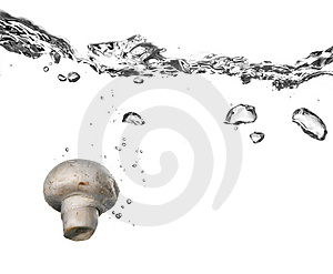 Mushroom splash in water Stock Photos