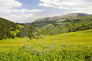 High Mountain's Summer View Royalty Free Stock Image - Image: 6411556