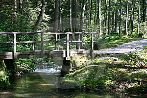 Wooden Bridge In A Park Stock Images - Image: 6416494