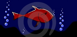 Fish Stock Image - Image: 6418771