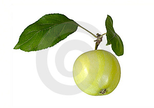 Green Apple Royalty Free Stock Photo - Image: 6455545
