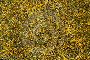 Wall Texture Royalty Free Stock Photography - Image: 6460127