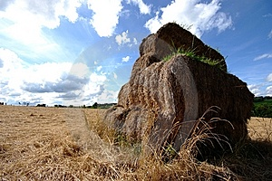 Hay Stack Royalty Free Stock Images - Image: 6460979