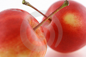 Two Apples Stock Photo - Image: 6463100