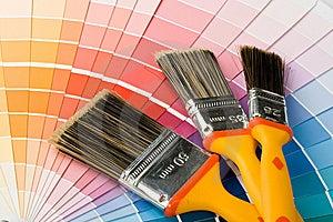Borstels en kleurengids