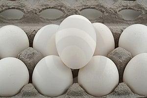 Comida de huevos en la caja.