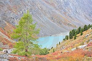 Turquoise Lake Stock Image - Image: 6523751