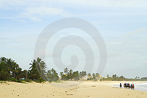 Ride Horseback Along The Beach Royalty Free Stock Photo - Image: 6535285