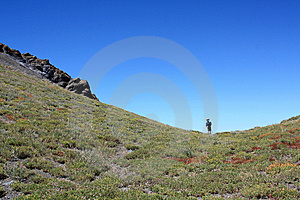 Hiker In Saddle Royalty Free Stock Photography - Image: 6545557