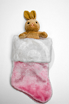 Bunny In Pink Stocking Stock Photo - Image: 6546250