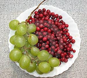 The Autumn Still Life Royalty Free Stock Image - Image: 6553046