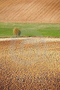 Countryside Landscape Stock Image - Image: 6553701