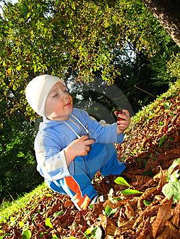 Little Boy Play Stock Photos - Image: 6555633