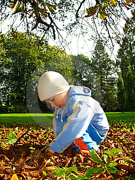 Little Boy Play Royalty Free Stock Photography - Image: 6555727