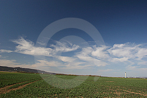 Landscape With Field And Cirrus Clouds Stock Images - Image: 6571714